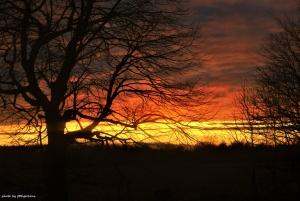 /A cada pôr do Sol, uma nova pintura!