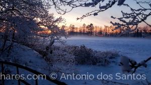 Paisagem Natural/o inverno passado