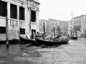 /GONDOLAS NO GRANDE CANAL - Veneza