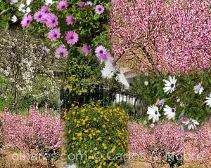 Outros/Chegou a Primavera