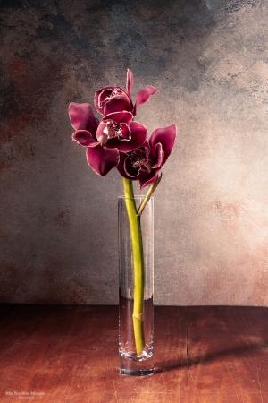 Outros/Orquídea
