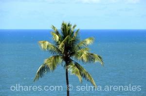 Paisagem Natural/Na solidão do mar...