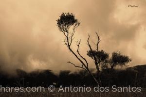 Outros/quando as nuvens descem á terra