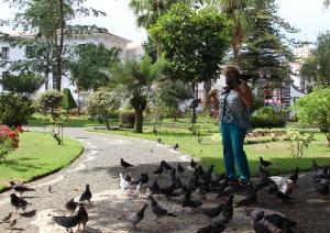 /Jardim Duque da Terceira...........