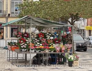 Gentes e Locais/No meu mercado
