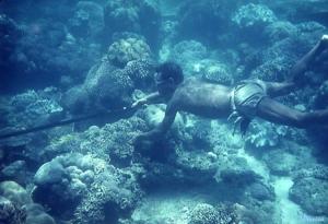 Desporto e Ação/Em mergulho...