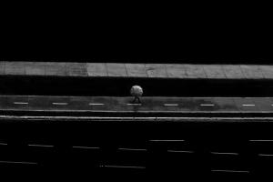 Outros/no silêncio da solidão...