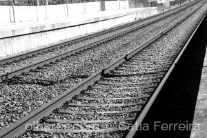 Fotografia de Rua/Entre linhas!