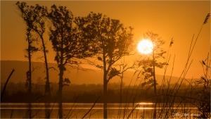 Paisagem Natural/Always the sun
