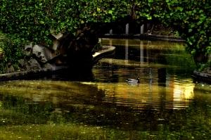 Outros/Em àguas turvas eu nado...........