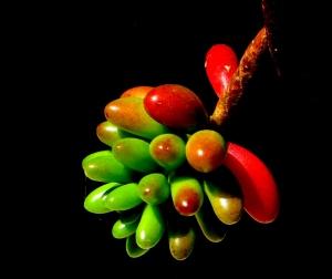 /De verde a vermelho, sem ser semáforo