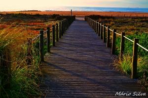 Outros/O caminho parece tranquilo!!!!! ..................