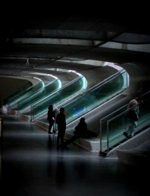 Arquitetura/Gare Oriente