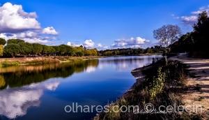 Paisagem Natural/Barragem dos Patudos.