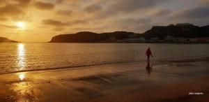 Gentes e Locais/ As ondinhas da Baía...