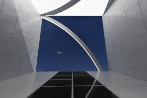 Arquitetura/Metamorfoses de voo e canto