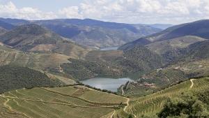 Paisagem Natural/Douro adentro, Miradouro de Vargellas