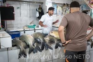 Gentes e Locais/dia de peixe..