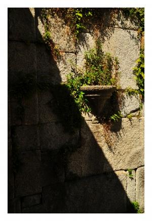 História/Pormenor do Parque das Virtudes - Porto
