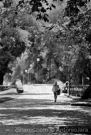 Fotografia de Rua/SOMBRAS E LUZ NO JARDIM