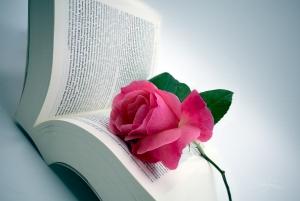 Outros/boas leituras