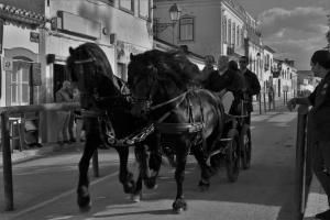 Fotografia de Rua/Passeio na feira