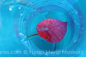 /Azul e Vermelho