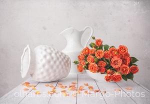 Outros/O perfume das rosas