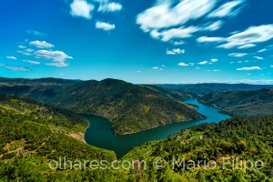Paisagem Natural/The curve of the river