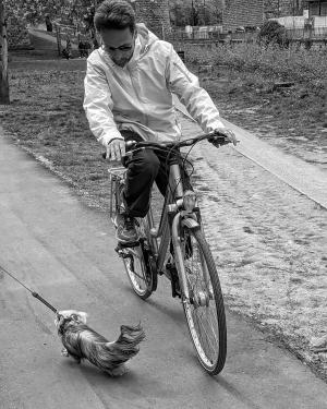 Fotografia de Rua/Cuidado com o cão....