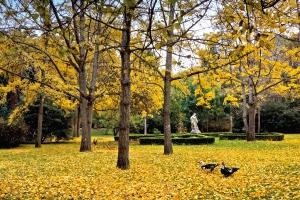 Gentes e Locais/Jardim botânico Tropical