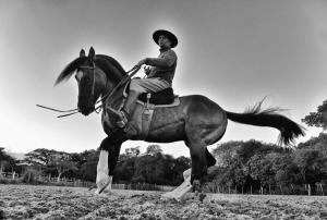 Fotojornalismo/A Cavalo