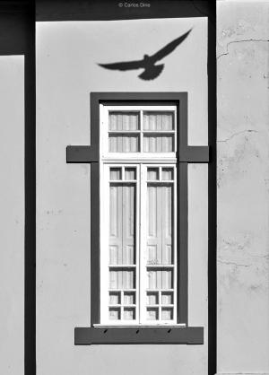 Fotografia de Rua/A luz que não entra