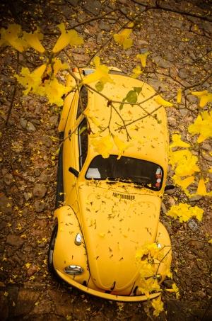 Paisagem Urbana/Amarelo :)