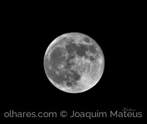 /Lua Cheia