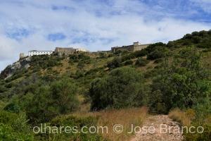 """Paisagem Natural/""""Encosta do Castelo de Palmela."""""""