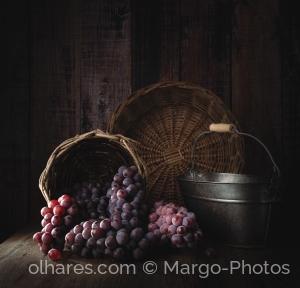 Outros/A colheita da uva