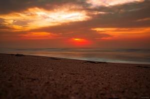 Paisagem Natural/Praia da Vagueira - 29032021