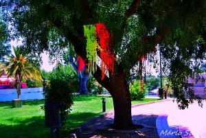 Gentes e Locais/CONSTANCIA -Jardim na confluência do Zezere com o