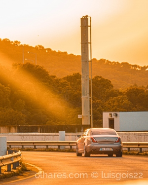 Fotografia de Rua/Jaguar in sunset