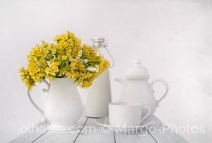 Outros/Amarelo no branco