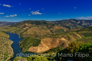 Paisagem Natural/The light and nature of the Douro