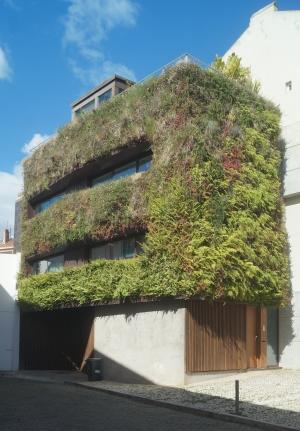 Arquitetura/Casa com jardim no exterior