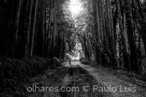 Gentes e Locais/A luz no meu caminho