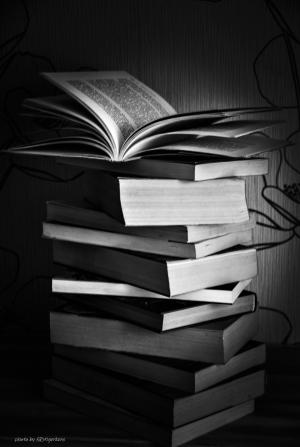 Outros/ The books!