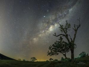 Paisagem Natural/Jornada nas Estrelas