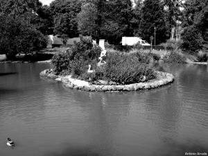 /Parque Eduardo VII