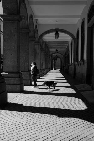Fotografia de Rua/Fiel amigo