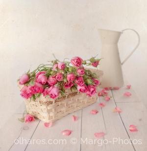 Outros/Dream of flowers...