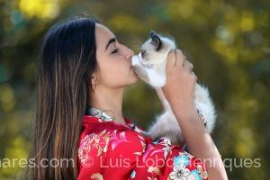 Retratos/cat lovers